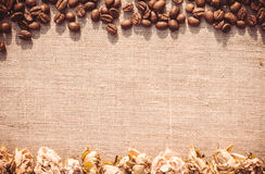 Elegant background. Coffee bean and dried rose royalty free stock photography