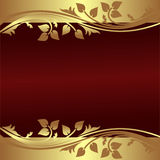 Elegant Background with floral Borders. Royalty Free Stock Photos