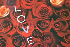 Elegant background for the holiday on Valentine`s Day royalty free stock photography