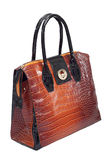 Elegant bag Stock Images