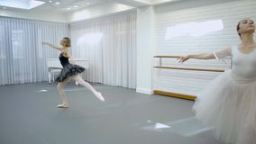 Elegant ballerinas dance in ballet studio. Two dancers stand in posture then move gracefully, pulling toes and arching slim body elegantly. Beautiful ladies stock video footage