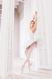 Elegant ballet dancer standing on tiptoes Stock Photo
