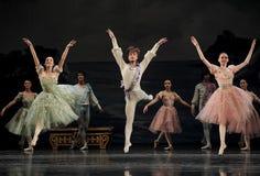 Elegant Ballet Royalty Free Stock Photo