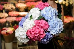 Elegant and beautiful bouquet of big and colorful flowers Royalty Free Stock Photo