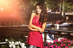 Elegant beautiful brunette lady posing. Royalty Free Stock Photos