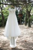 Elegant white bride dress hanging a three in a garden royalty free stock photo
