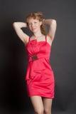 The elegant beautiful girl Stock Images