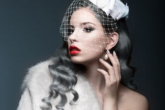 Elegant beautiful girl with silver curls and a veil. Winter image. Beauty face. Stock Photography