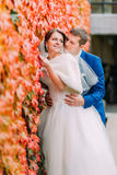 Elegant beautiful wedding couple, bride and groom posing in park near wall with red creeping plant Stock Image