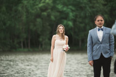 Elegant beautiful wedding couple posing near a lake at sunset.  Royalty Free Stock Image