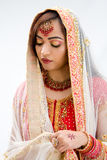 Elegant Bengali bride. Arranging veil looking down, isolated stock photography