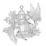 Elegant bird coloring page Stock Photos