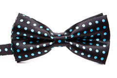 Elegant black bow tie in blue polka dots Royalty Free Stock Photos