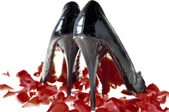 Elegant black shoes Stock Image