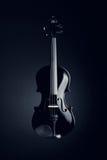 Elegant black violin Stock Images