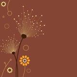 Elegant bloemenontwerp Stock Afbeeldingen