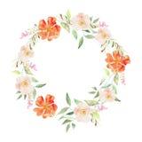 Elegant blom- samling med sidor och blommor som drar vatten Royaltyfria Bilder