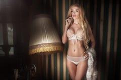 Elegant blonde sexy woman. Stock Photos