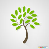 Elegant boomsilhouet Het concept van de aard Stock Foto