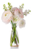 Elegant bouquet Royalty Free Stock Photo