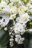 Elegant bouquet in cream and white Royalty Free Stock Images