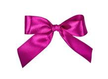 elegant bow Royaltyfria Bilder