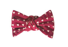 Elegant bow tie for a holiday Royalty Free Stock Image