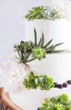 Elegant bröllopstårta med blommor och suckulenter Arkivfoton