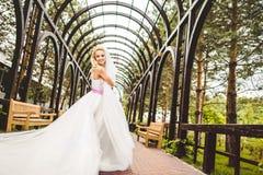Elegant bride dancing and posing Royalty Free Stock Photos
