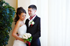 Elegant bride and groom Stock Images