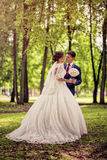 Elegant bride and groom in full growth on a background of a forest or Park Stock Image