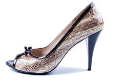 Elegant brown women's shoes Royalty Free Stock Photo