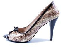 Elegant brown women's shoes Royalty Free Stock Photo
