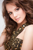 Elegant brunette beauty. Royalty Free Stock Image