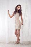 Elegant brunette lady posing Royalty Free Stock Image