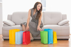 Elegant brunette looking in shopping bag Stock Photos
