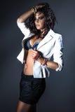 Elegant brunette woman posing. Stock Photography