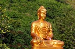 Elegant Buddha Stock Images