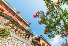 Elegant building and oleander tree in world famous Capri island. Italy stock photo