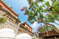 Elegant building and oleander tree in world famous Capri island. Italy royalty free stock photos