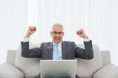 Elegant businessman cheering with laptop at home Stock Photo