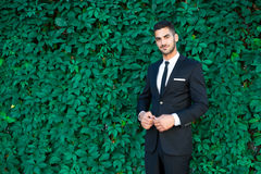 Elegant businessman standing on leaves background Stock Photo