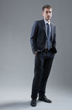 Elegant businessman standing Royalty Free Stock Photography