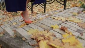 Elegant businesswoman climbing stairs in autumn stock video footage