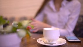 Attractive businesswoman in the cafe with glasses typing on her smart phone in slow motion. stock video footage