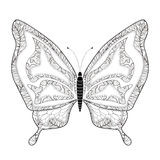 Elegant butterfly coloring page Stock Images