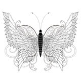Elegant butterfly coloring page Stock Image