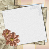 Elegant Card for congratulation or invitation Stock Images