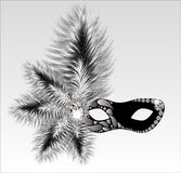 Elegant carnival mask with beautiful feathers. Royalty Free Stock Image