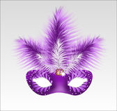 Elegant carnival mask with beautiful feathers. Royalty Free Stock Photography